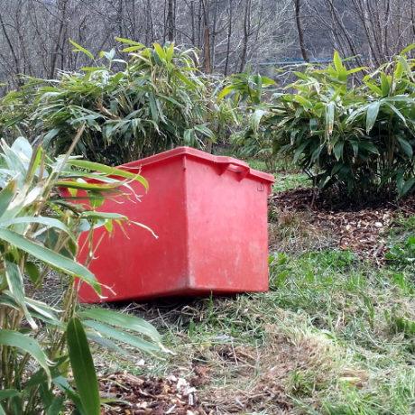 Sogreen-bambuseto-lavori-primaverili
